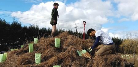 Planting underway at Reid's Pit.