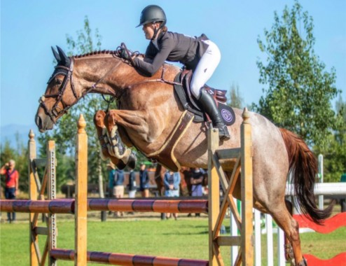 Sophie Townsend who has been named on one of the ESNZ Jumping Squads. Sophie is riding Kingslea Kiwi here at the recent Tavendale and Partners' National Show Jumping Championships which were held at Mclean's Island. Photo credit: Jane Thompson.